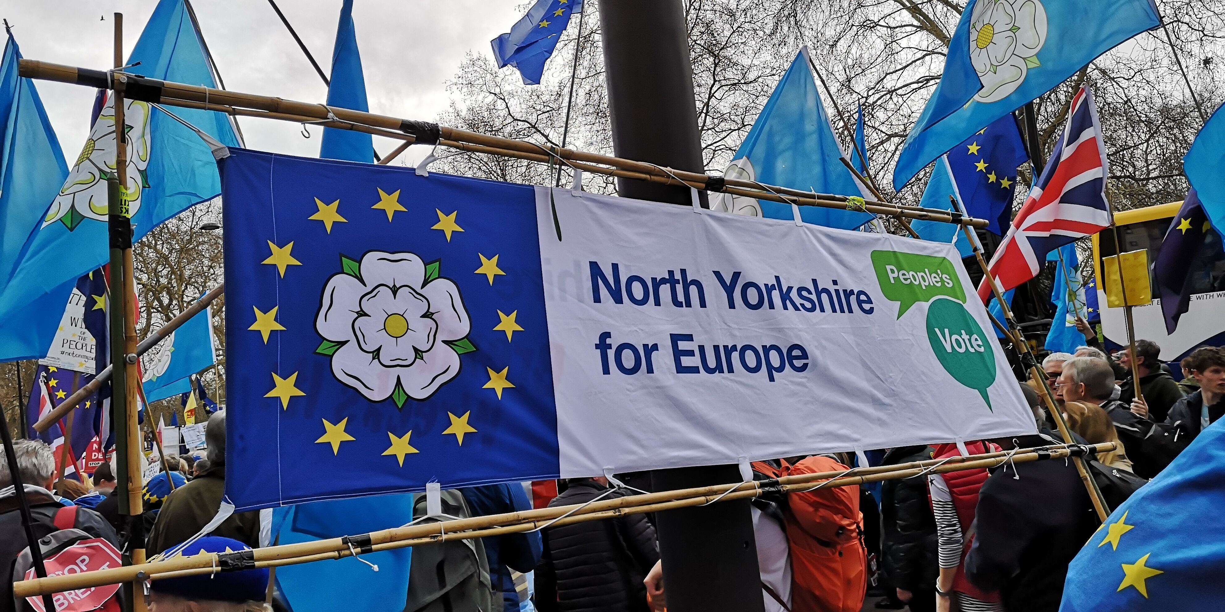 North Yorkshire for Euriope Banner at the march