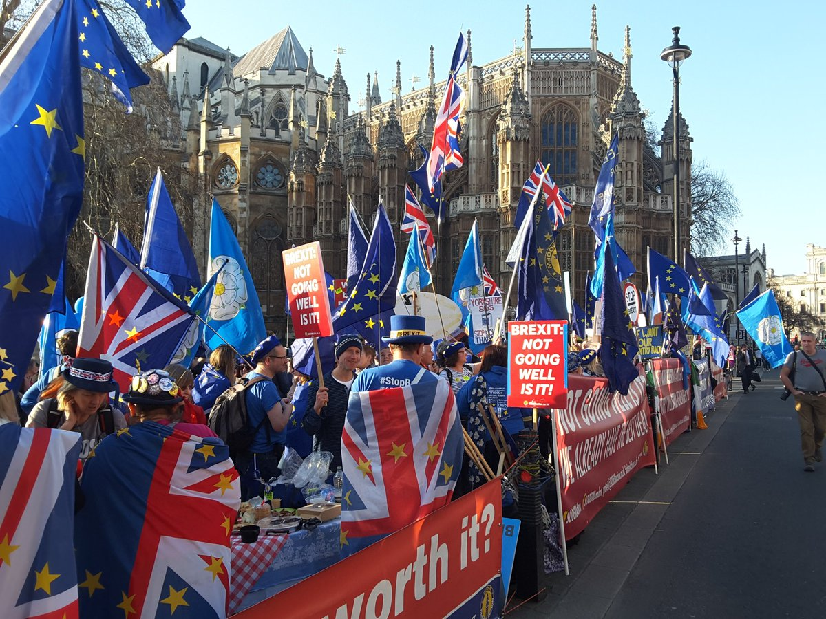 Yorkshire for Europe campaigners at SODEM demo